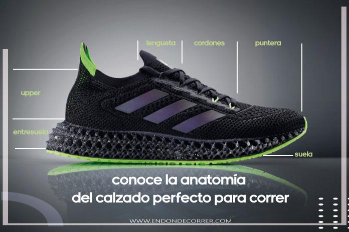 Conoce la anatomía del calzado perfecto para correr