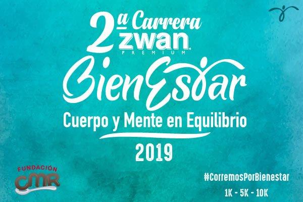 carrera zwan 2019