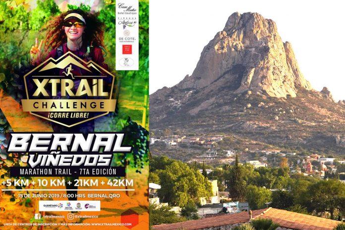 Maratón Xtrail Bernal Viñedos
