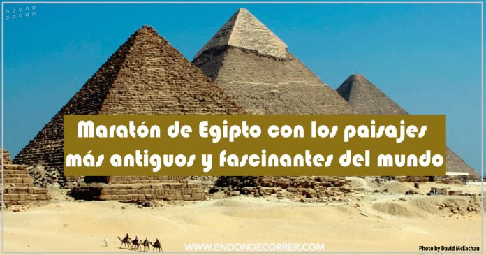 Maratón-de-Egipto