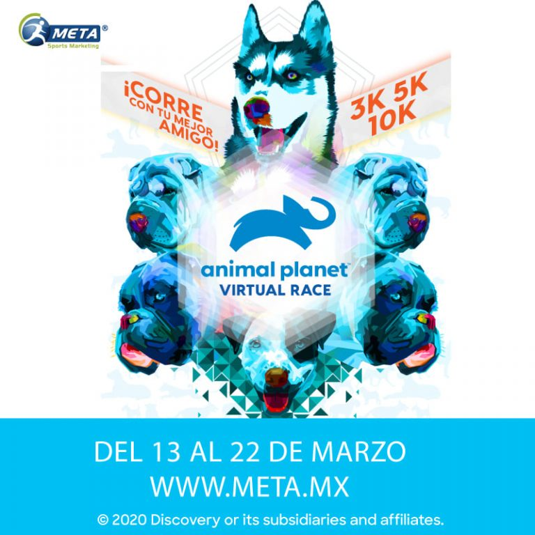 Animal Planet Virtual Race corre con tu mascota