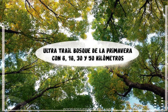 Sigue corriendo en la naturaleza en el Ultra Trail Bosque de la primavera